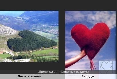 К дню Св.Валентина: лес в Испании похож на сердце))))))