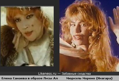 Лиса Алиса похожа на солистку Ниагары