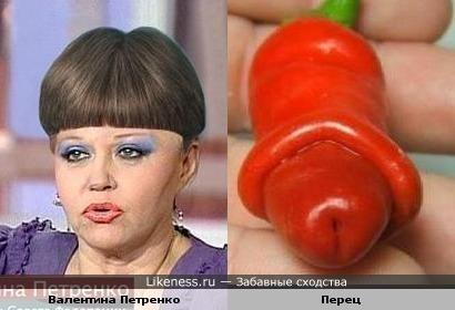 Валентина Петренко-член Совета Федерации, словно перчик