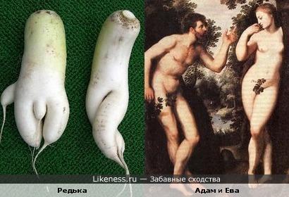 Еще одна пара Адама и Евы))