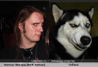 Маттиас Нюгард похож на собаку