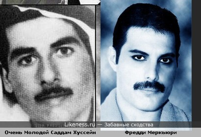 Фредди Меркьюри похож на молодого Саддама Хусейна