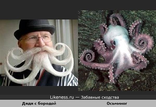 Какой-то бородатый дядя похож на осьминога