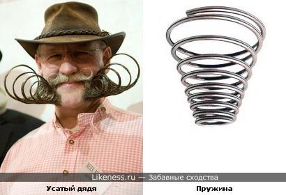 Усы у этого дяди похожи на пружины