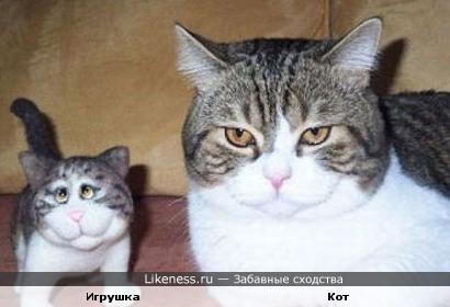 Игрушка и кот