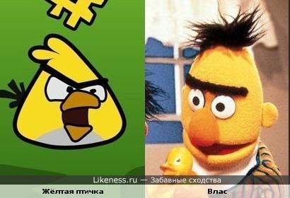 """Жёлтая птичка из игры """"Angry Birds"""" похож на Власа из """"Улицы сезам"""""""
