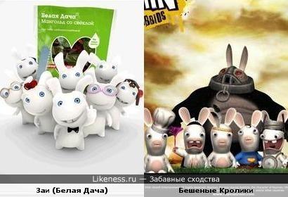"""Заи из рекламы """"Белая дача"""" - Бешеные Кролики?"""