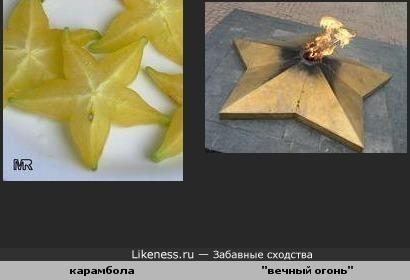 """Срез карамболы похож на звезду для """"вечного огня"""""""