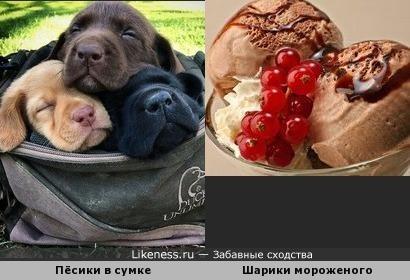 Один ванильный и два шоколадных, пожалуйста!