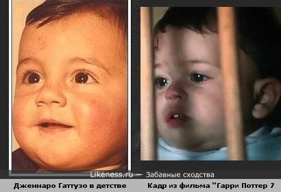 Маленькие Дженнаро Гаттузо и Гарри Поттер похожи