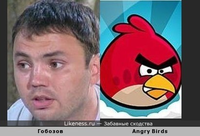 Александр Гобозов и Angry Birds