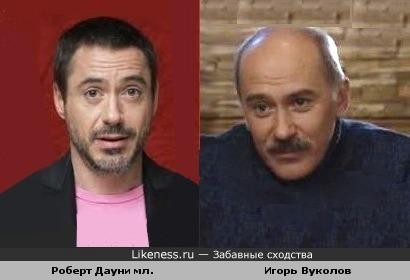 Актеры Игорь Вуколов и Роберт Дауни мл. похожи