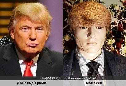 Дональд Трамп похож на манекен в витрине