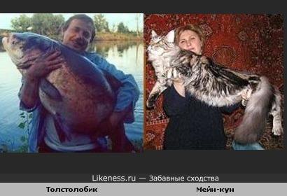 Рыболов похож на кошатника