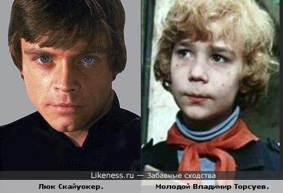 Люк Скайуокер похож на молодого Владимира Торсуева.