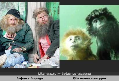 Чудеса эволюции