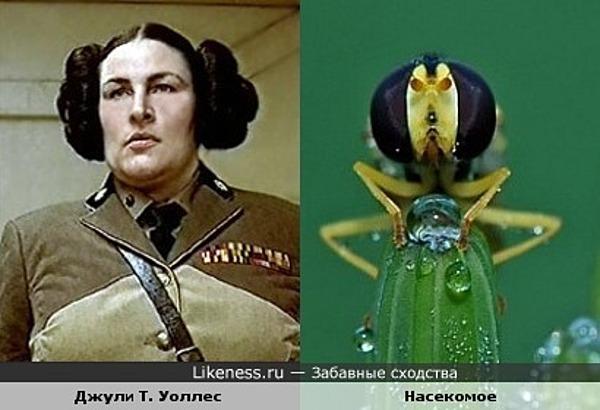 """Джули Т. Уоллес в """"Пятом Элементе"""" и насекомое"""