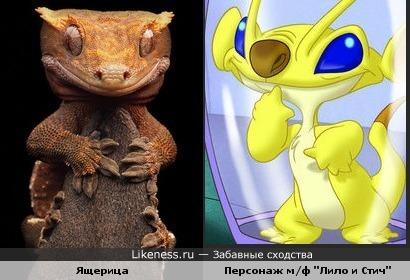 """Ящерица и персонаж м/ф """"Лило и Стич"""""""