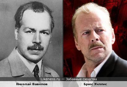 Николай Вавилов и Брюс Уиллис