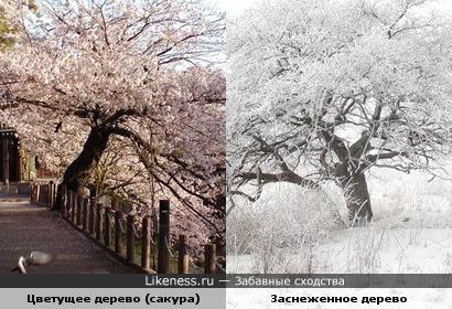 А мне всегда чего то не хватает: зимою-лета,осенью-весны…