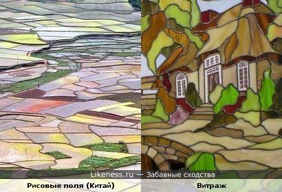 Рисовые поля напоминают произведение искусства