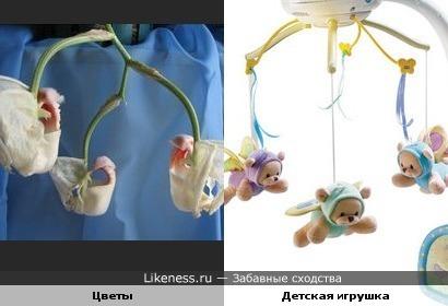 Цветы и детская игрушка