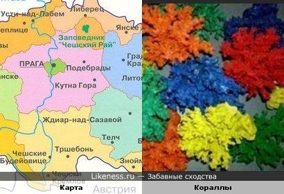 Политицеская карта похожа на кораллы