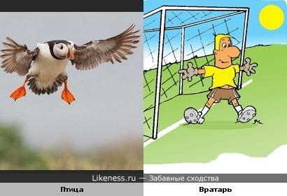Птица-вратарь