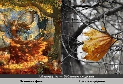 Осенняя Фея