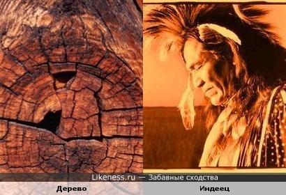 Профиль вождя индейского племени