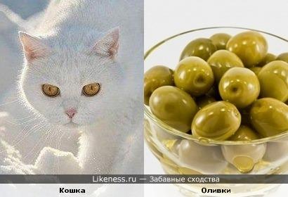 Оливковые глаза