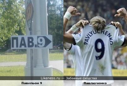 Роман Павлюченко похож на табличку