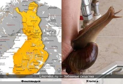 Территория Финляндии похожа на улитку