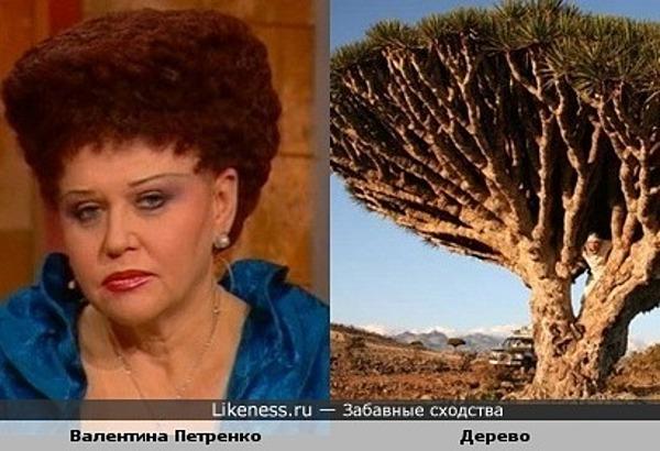 Прическа Валентины Петренко похожа на крону дерева