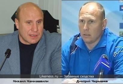 Михаил Мамиашвили похож на Дмитрия Черышева