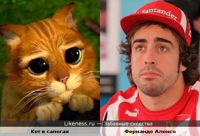 """У Фернандо Алонсо такой же взгляд как у Кота в сапогах из """"Шрека""""."""