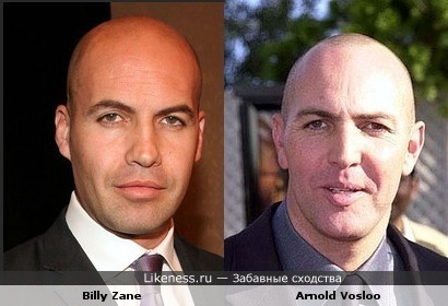 Arnold Vosloo похож на Billy Zane