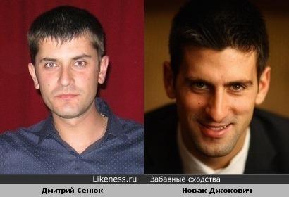 Дмитрий Сенюк похож на Новак Джокович
