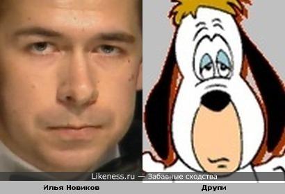 Илья Новиков похож на Друпи
