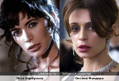 Актриса Лиза Барбускиа похожа на актрису Оксану Фандеру