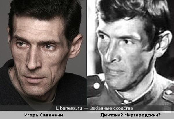 Актер Игорь Савочкин похож на актера Дмитрия Миргородского