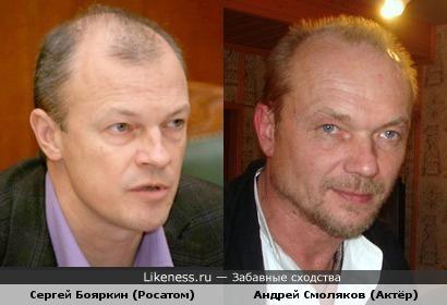 Сергей Бояркин похож на Андрея Смолякова
