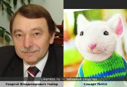 Георгий Владимирович Майер похож на Стюарта Литтла