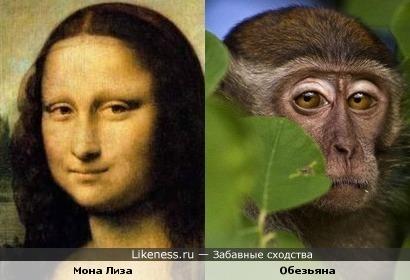 Мона Лиза и грустная обезьянка