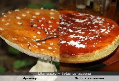 Мухомор и пирог - сиамские близнецы