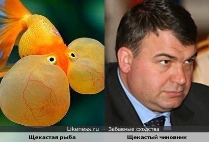 Молчит как рыба)))))))