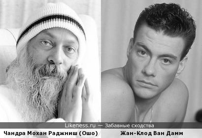 Бородатый Ван Дамм