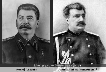 Новорят, Сталин очень гордился тем, что был похож на Пржевальского