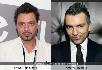 Владимир Тишко похож на Алекса Гаудино