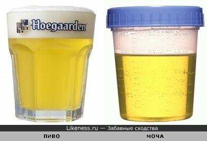 Пиво похоже на мочу